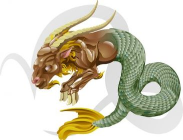 Capricorn Horoscope Makara Rashi - All About Capricorn Astrology